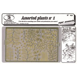 Assorted plants n.1 (1/35)