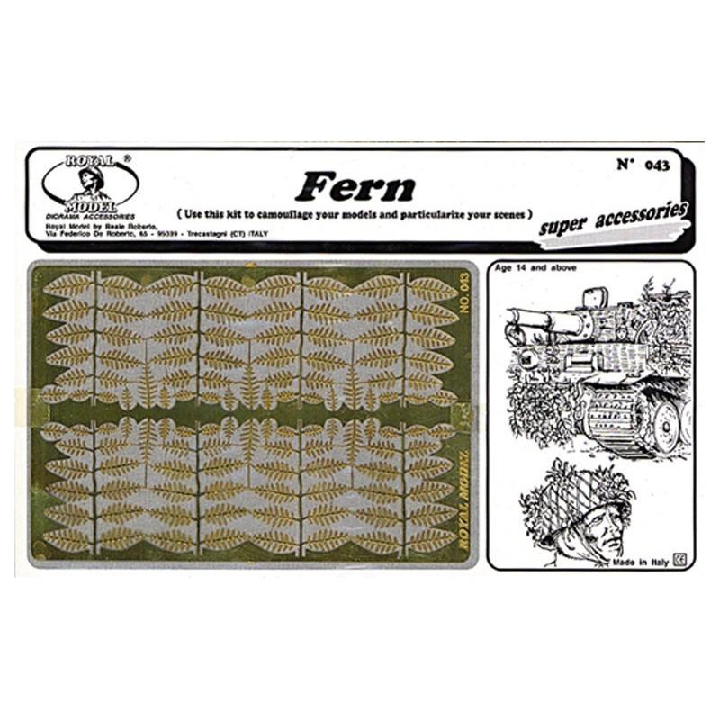 Fern (1/35)