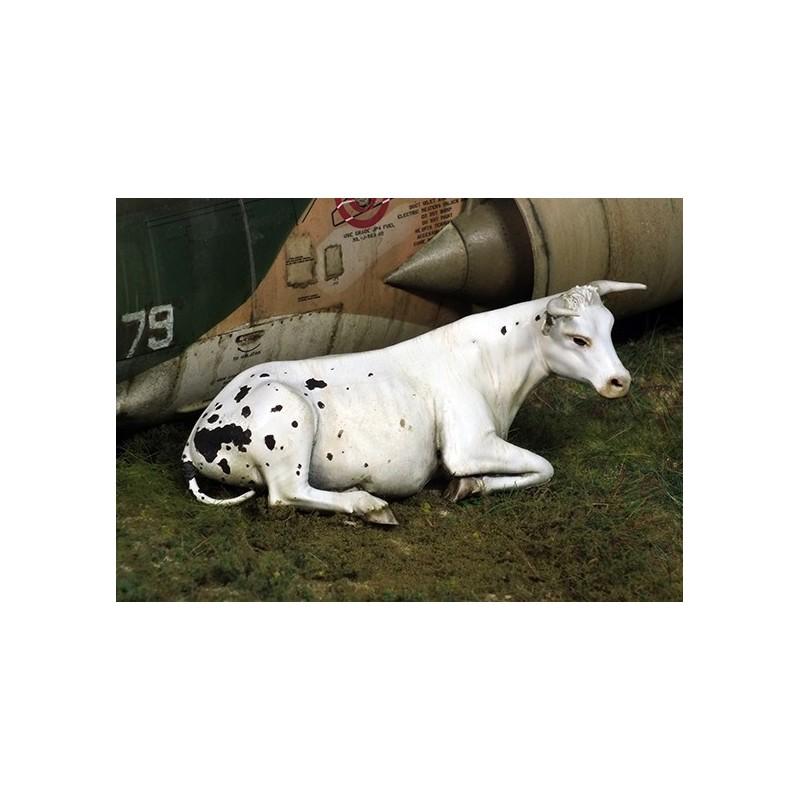 Cow lying down (1/35)