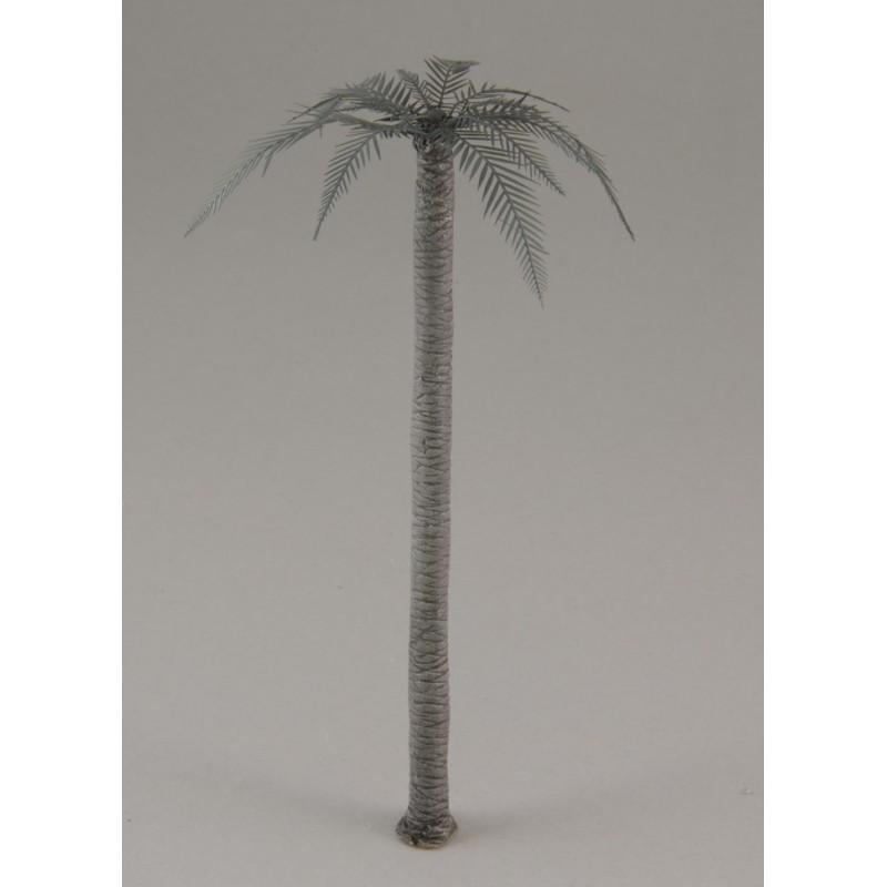 Palm (1/72)