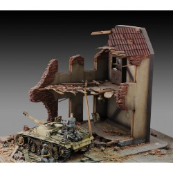 Internal house ruin (1/35)